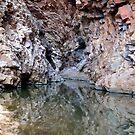 Pool Reflections - Central Australia by Lyn Fabian
