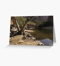 Outback river Greeting Card