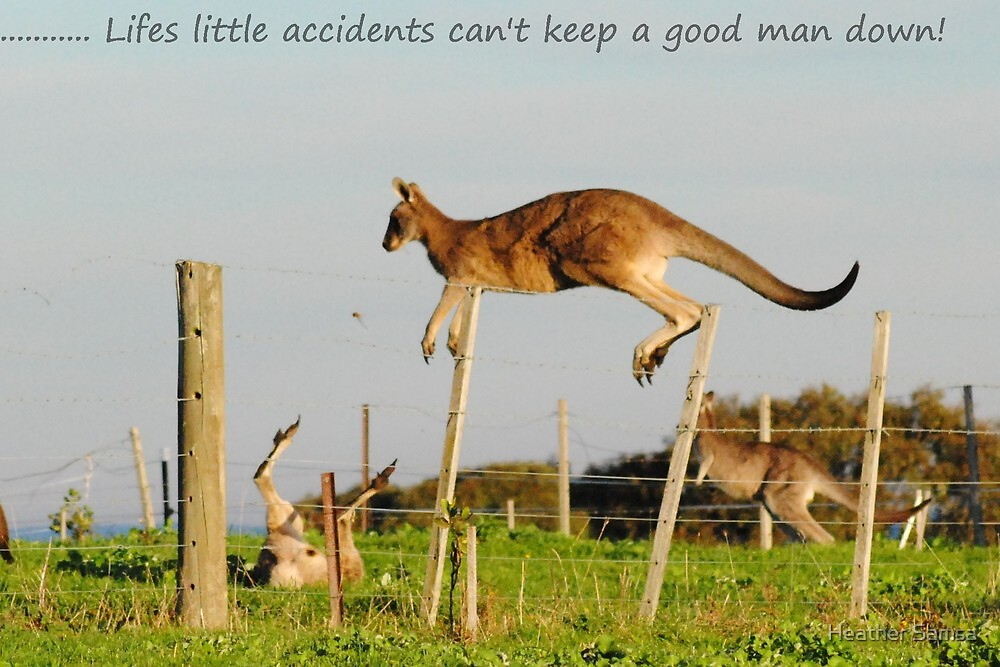 Lifes little accidents can't keep a good man (or roo) down by Heather Samsa