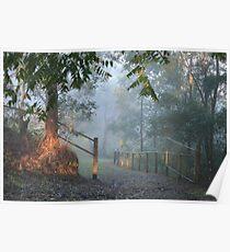 Early Morning Fog - SE Queensland Poster