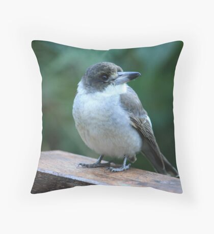 Baby Butcherbird Throw Pillow