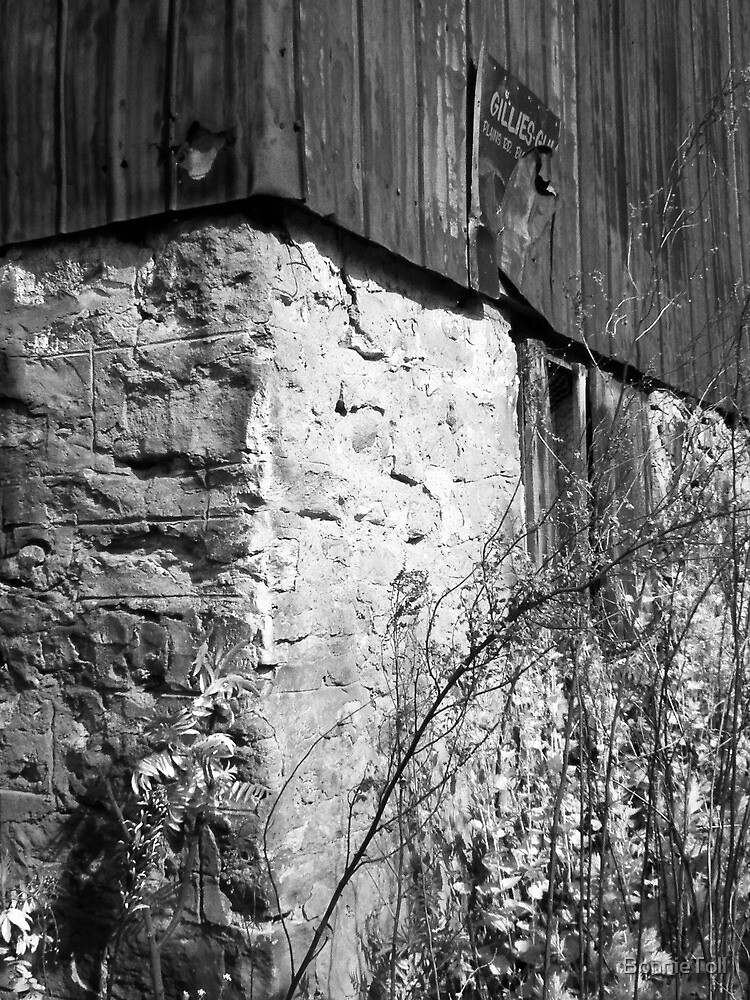 Old Barn in Black & White by BonnieToll