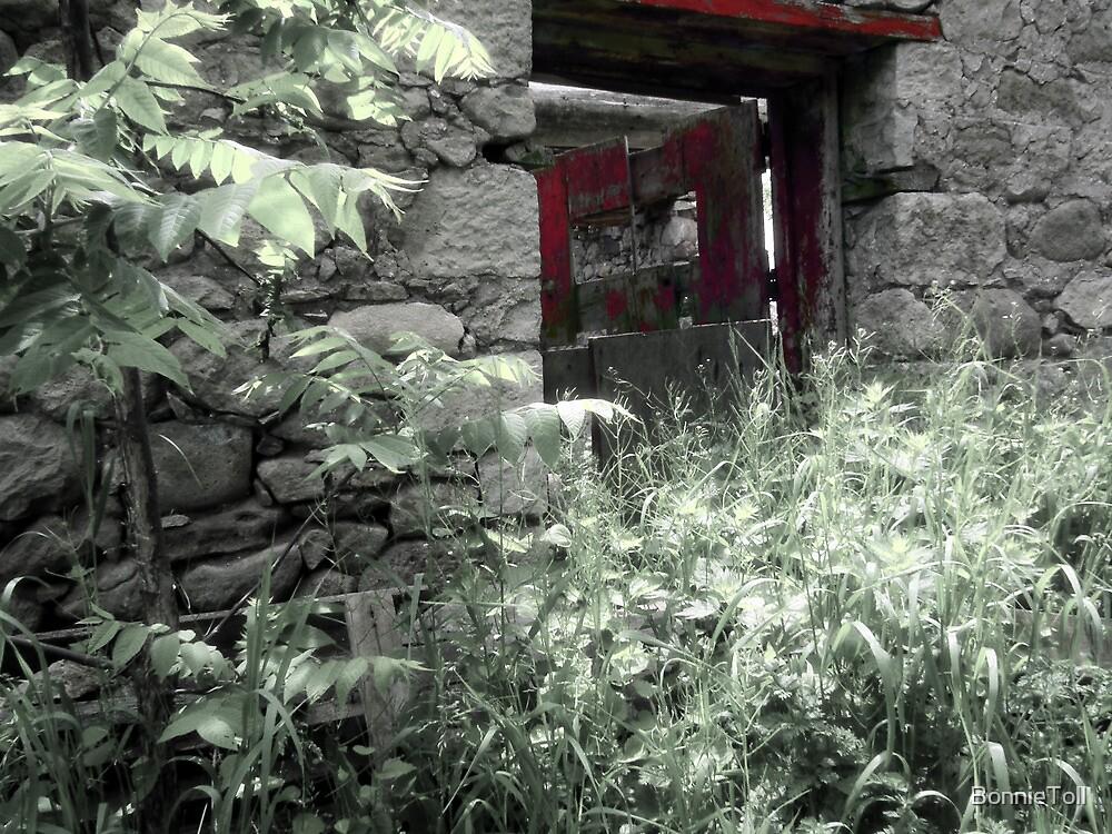Red Door by BonnieToll