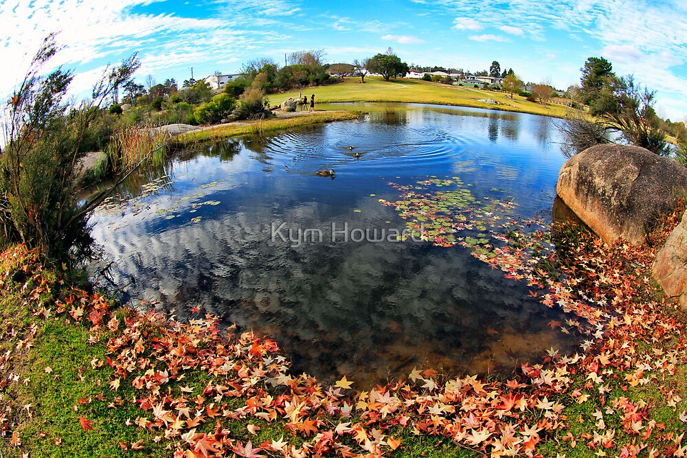 Picnic by the pond by Kym Howard