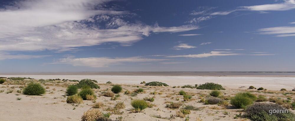 Lake Eyre Haligan Bay by goenin