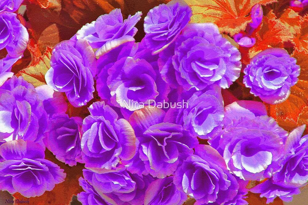 Dressed in Purple by Nira Dabush
