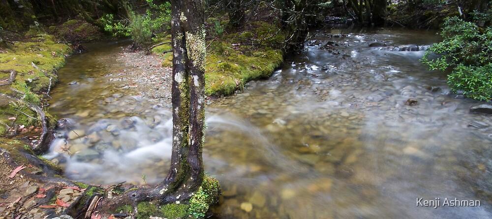 Tazi Stream by Kenji Ashman