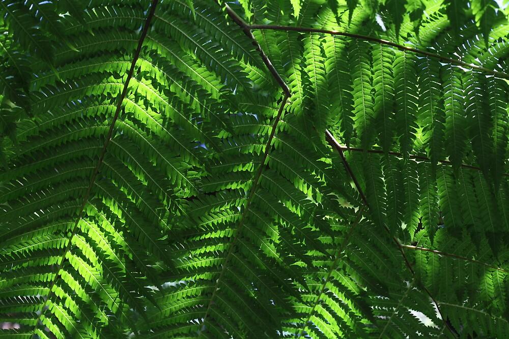 Leaves in Green by tenzil