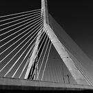 Charles river bridge, Boston, Massachusets by bartfrancois