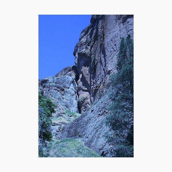 Green and Rock at Pinnacles National Monument  Photographic Print