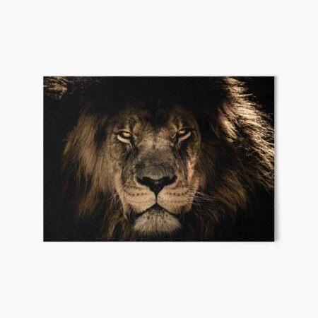 Lion Face Art Board Print