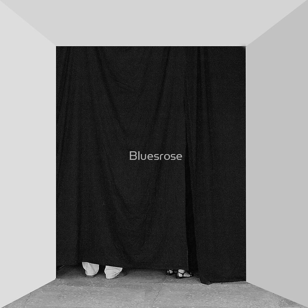Behind the scenes. II by Bluesrose
