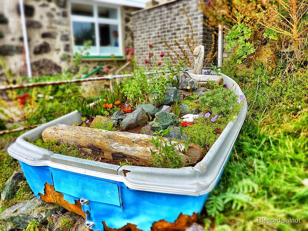 Garden Boat by Blessedwalnut