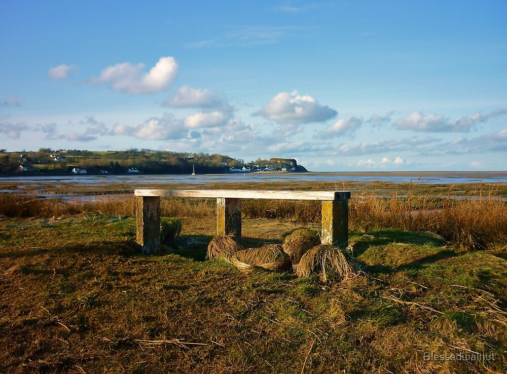 Bench with a view by Blessedwalnut