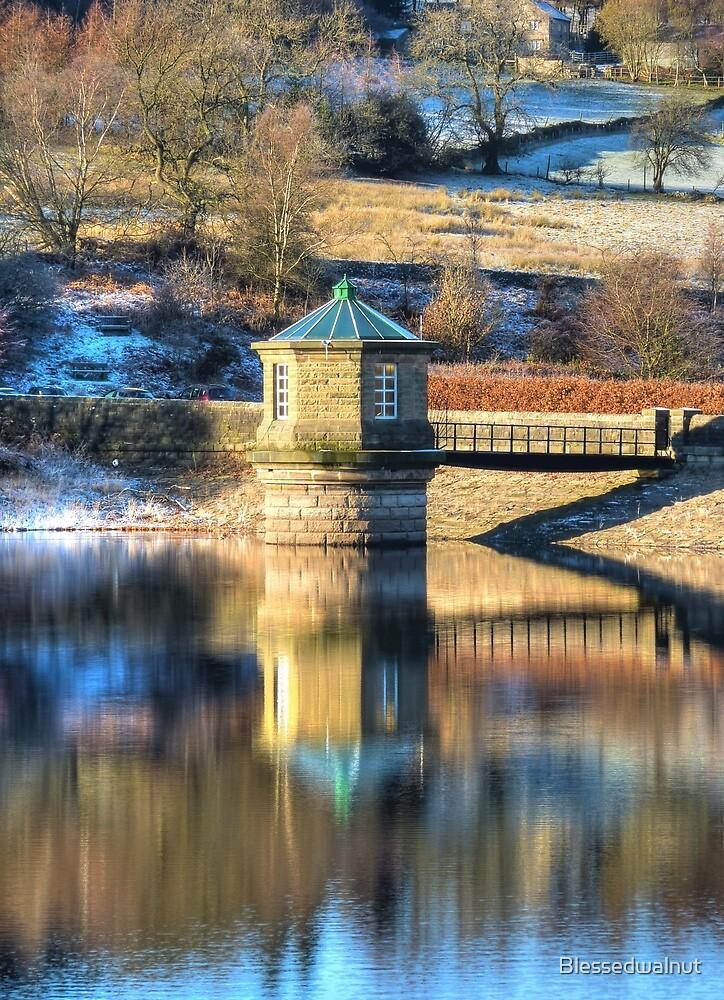 Reservoir Reflections by Blessedwalnut