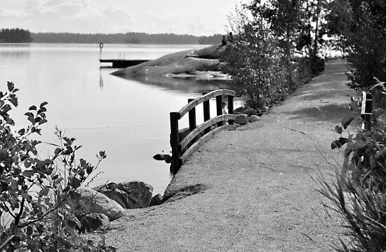 Little bridge by Teemu