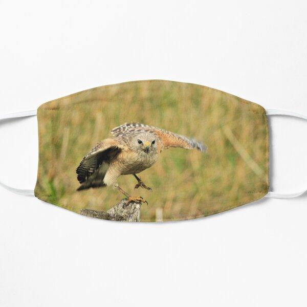 Red Shoulder Hawk Taking Flight Mask