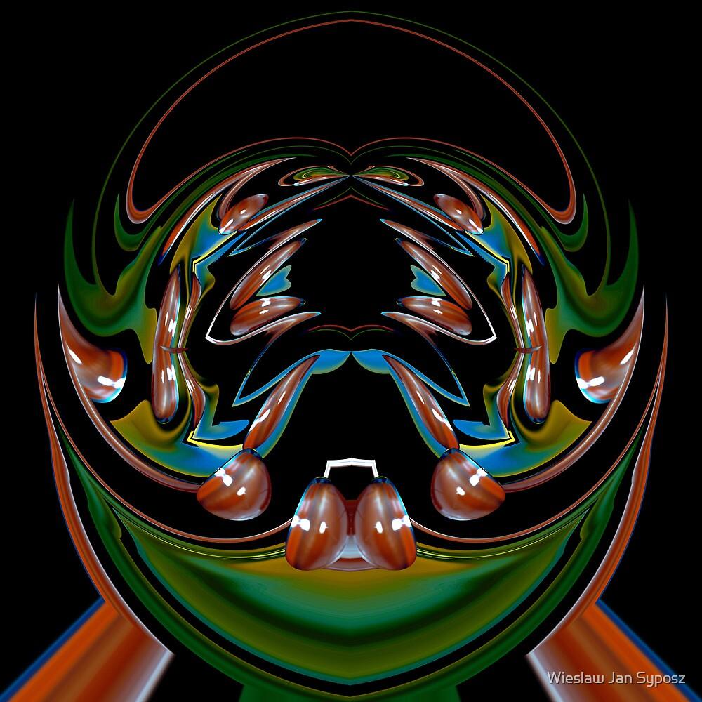 space spider by Wieslaw Jan Syposz