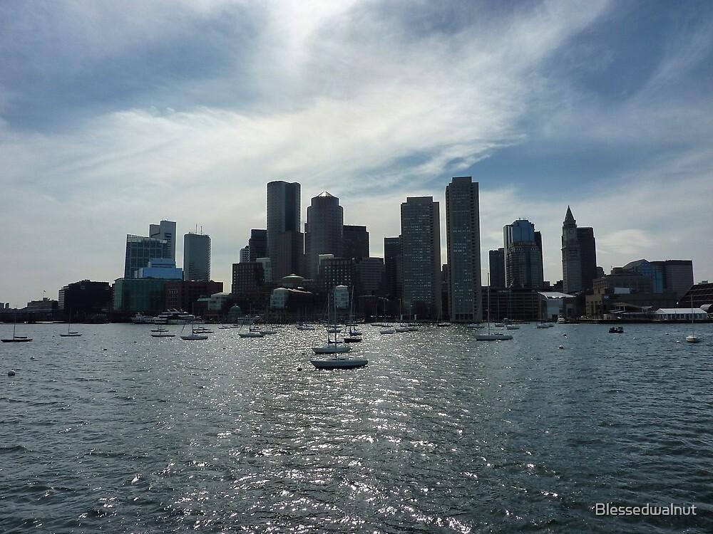 Boston Skyline by Blessedwalnut
