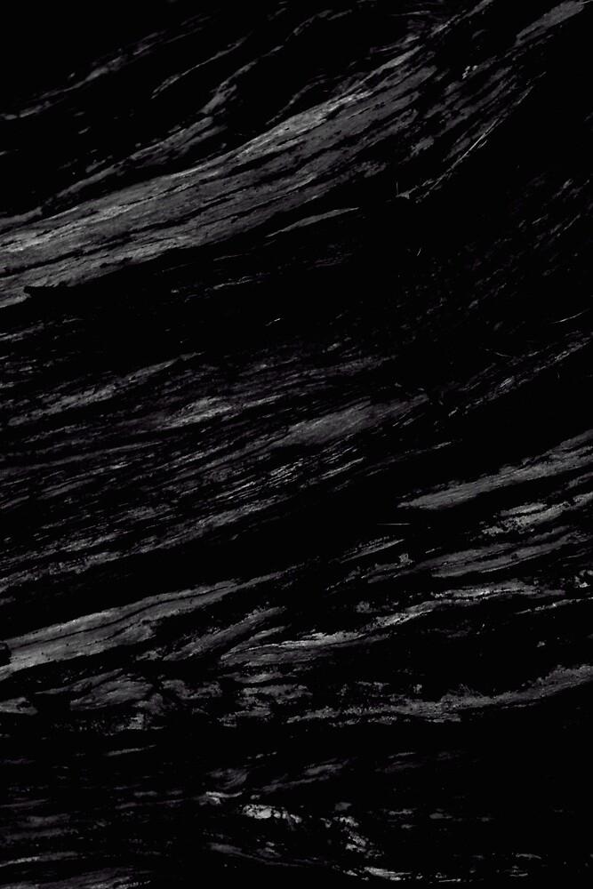 Rooted Dark by SteveeD