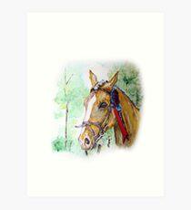 Prize winning horse Art Print