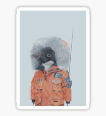 Antarctic Penguin Sticker