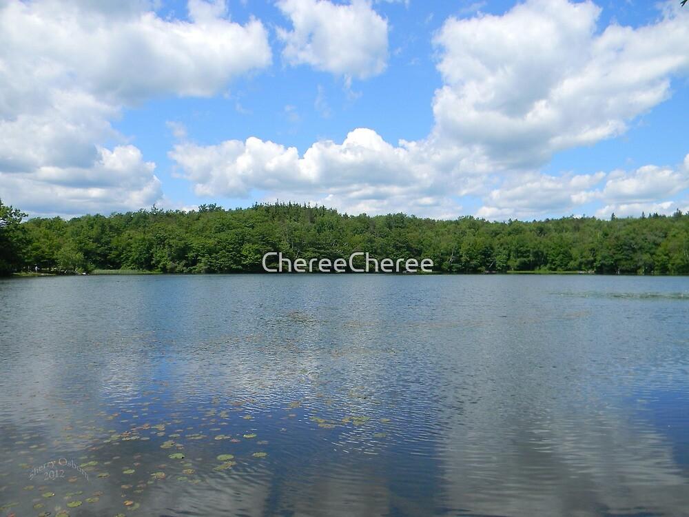 Cloud Reflections by ChereeCheree