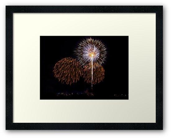 Fire Flowers pt3 by Mario Cassar