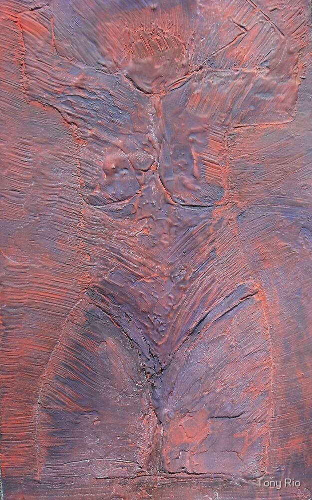 Archaeology by Tony Rio