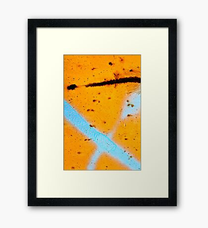 Feathered Pathway Framed Print