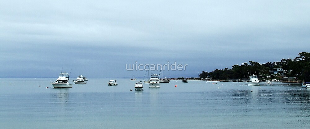 Traquil Waters by wiccanrider