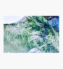 Tidal Reality Photographic Print