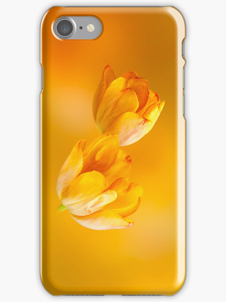 Tulips in Orange by Colin Bester