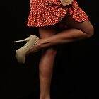 Flamingo by Dana Scott
