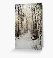 A passage through Narnia. Greeting Card