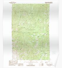USGS Topo Map Washington State WA Loup Loup Summit 242080 1989 24000 Poster