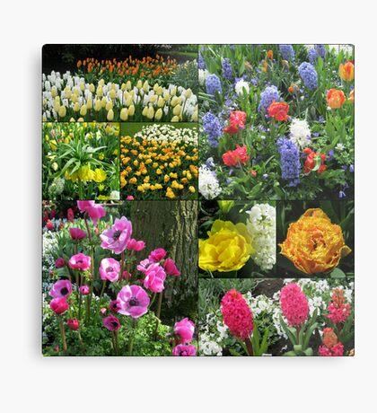 Keukenhof Collage featuring Anemones and Hyacinths Metallbild
