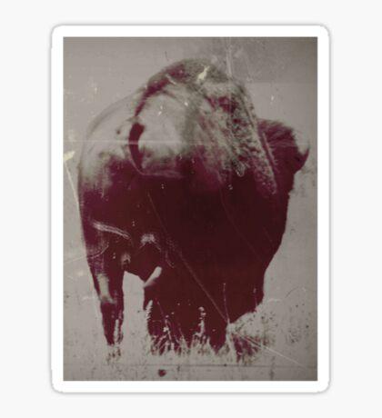 bison butt tee/hoodie Sticker