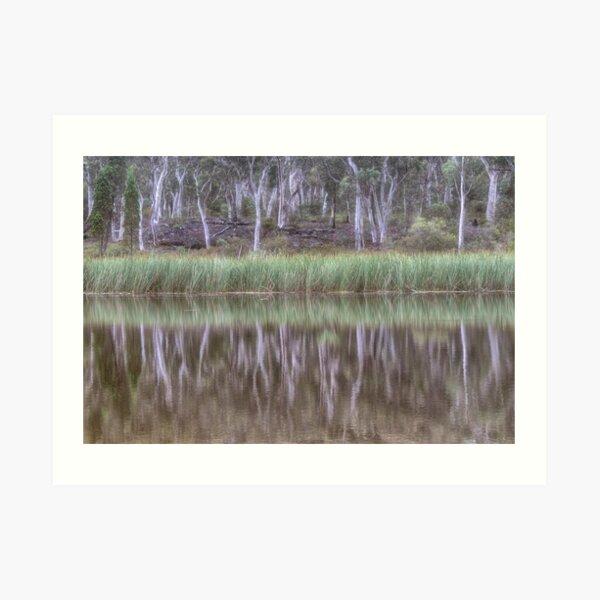 Australian Reflections Art Print