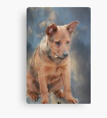 Little Gracie Metal Print