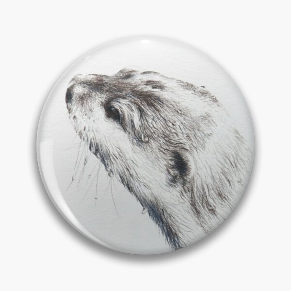 Short Clawed Asian Otter Study 1_1 Pin