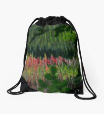 Study in Pink and Green Drawstring Bag