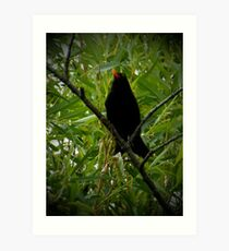 Does my beak stand out Art Print