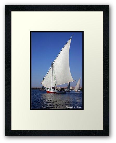 Felucca on the Nile  by Jonathan  Jarman