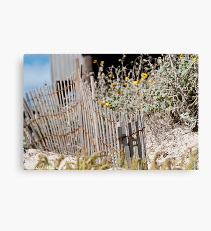Weathered and Happy Canvas Print