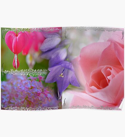 Gladness Abounding ~ Summer Flowering Poster