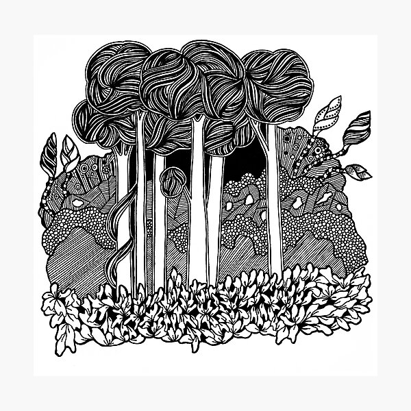 Tall Forest Black and White Doodle Art Photographic Print