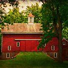 The Barn at Tinicum Park by Debra Fedchin
