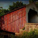 The Erwinna Covered Bridge by Debra Fedchin