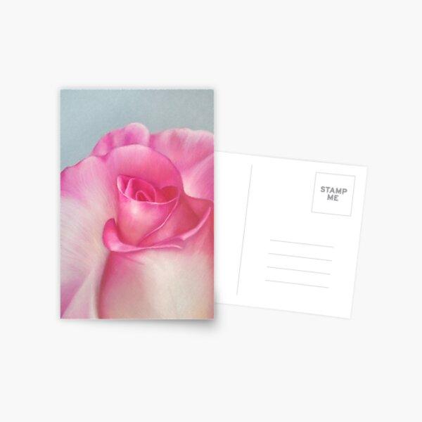 Pink Creation Postcard